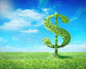 Dollar sign made of tree leaves on green spring field background